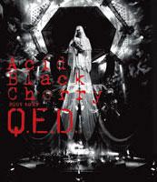 """Acid Black Cherry 2009 tour """"Q.E.D."""""""
