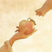 「りんごの木/宇宙からやってきたにゃんぼー」