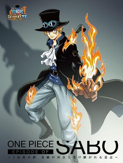ONE PIECE ワンピース」DVD公式サイト